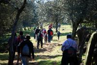 Medio millar de personas participan en la II Ruta Senderista ¨Subida a la Sierra de Alor¨