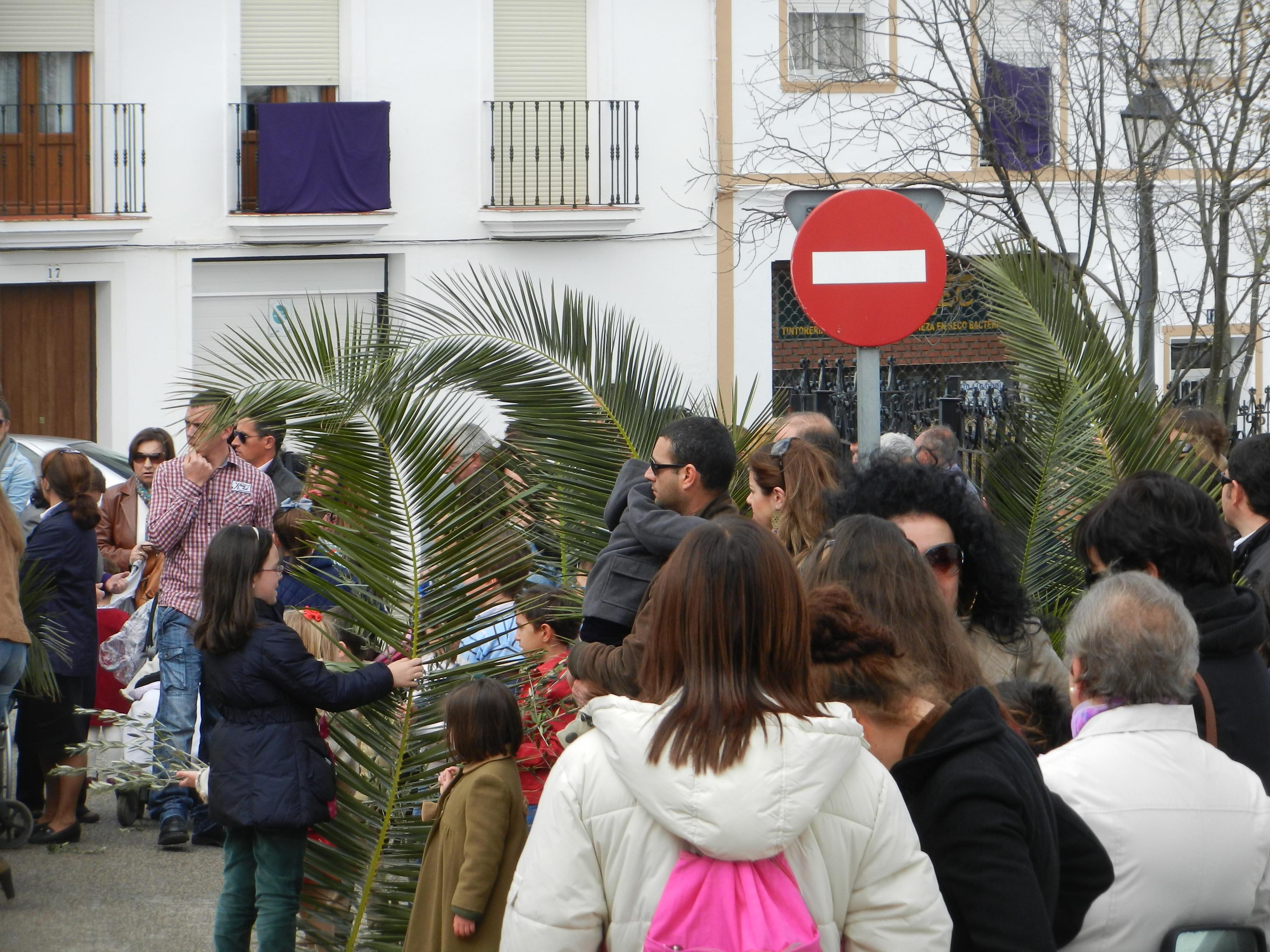 Procesión de la Borriquita