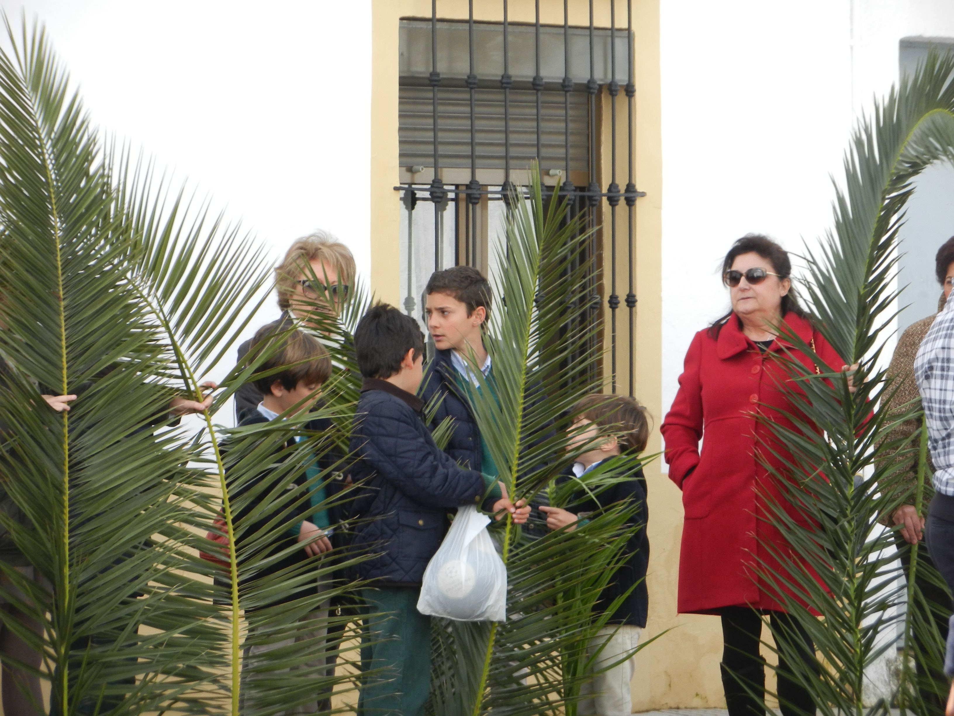 Los fieles esperan con las palmas la procesión de la Borriquita